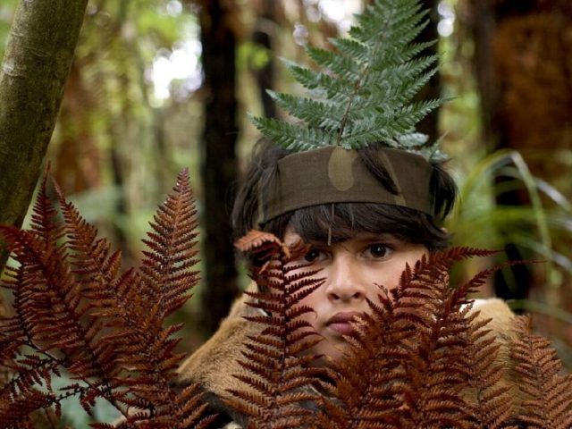 Video ocena: Lov na divjaka (The Hunt for Wilderpeople)